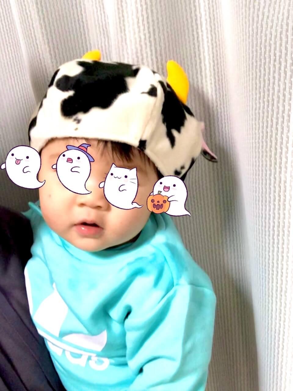 20201101牛さん帽子着画像1